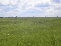 Продажа участка 3,5 ГА в Ярославской области с видом на храмы г. Ростова