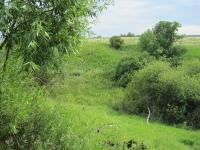 Продажа земельного участка 8,5 га на берегу озера в Каширском районе