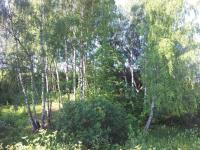 Продажа 18,4 га на берегу озера на границе с Московской областью